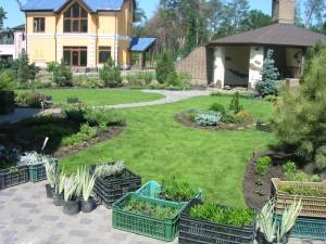 Сделайте подробный анализ своего сада