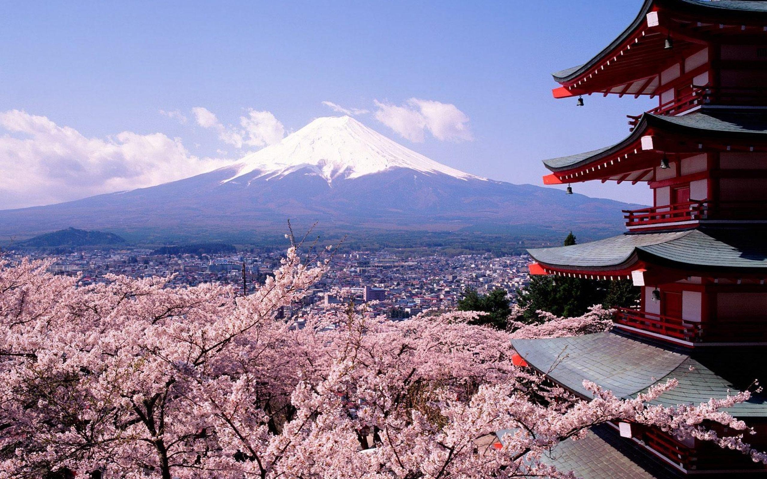Сколько стоит поездка в Японию?